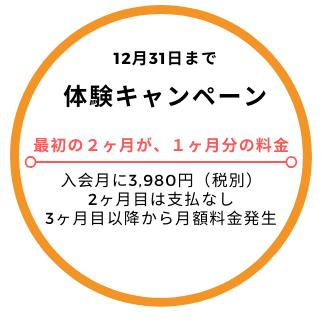 2 for 1 Campaign - Silver - Logo