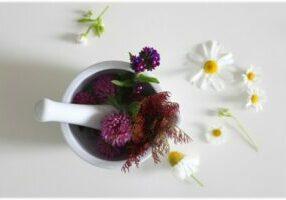 Remedies-Site-Pic